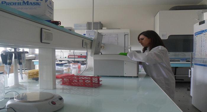 Senior researcher of the institute participates in the internship program in Bordeaux, France