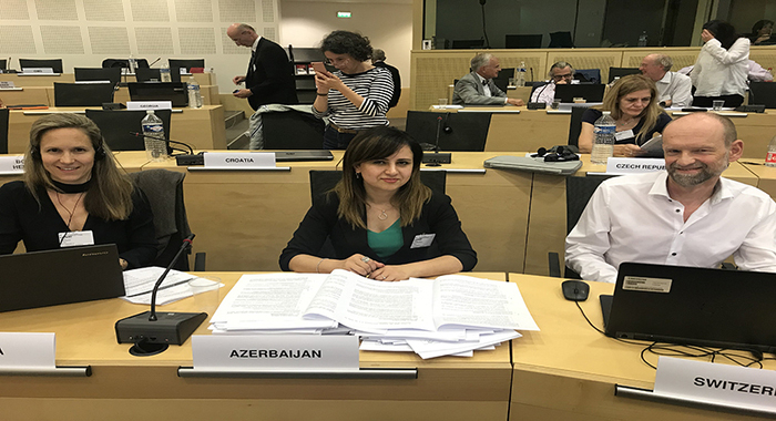 The young scientist of the institute participated in the meeting of the Bioethics Committee of the Council of Europe