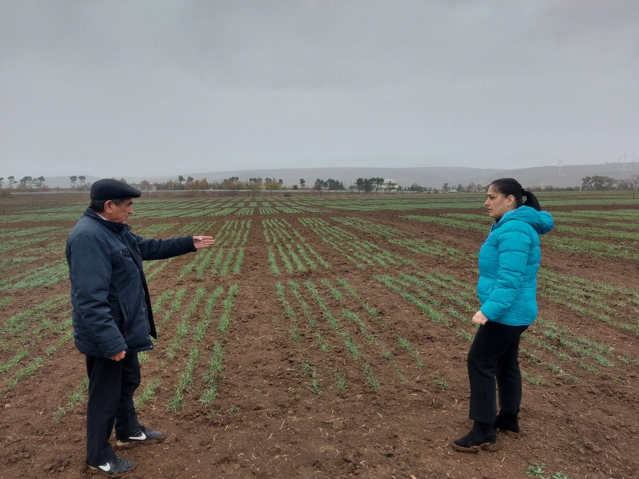 Employees of  IMBB were on a scientific trip in Gobustan RES of the Scientific Research Institute of Agriculture of the Ministry of Agriculture