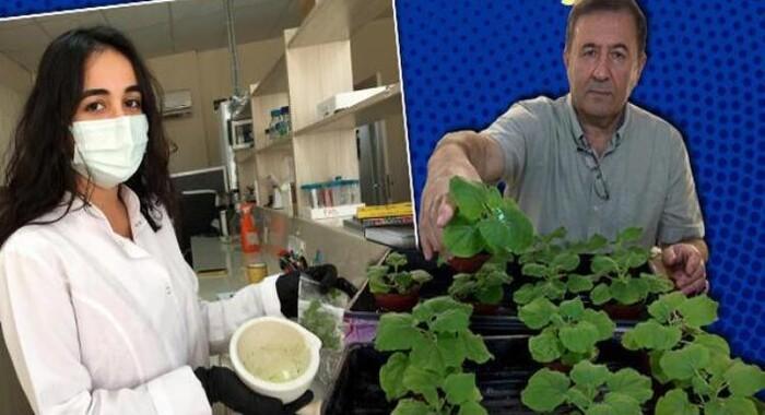 Azerbaijani scientist: Cocktail vaccine against coronavirus is ready for human trial