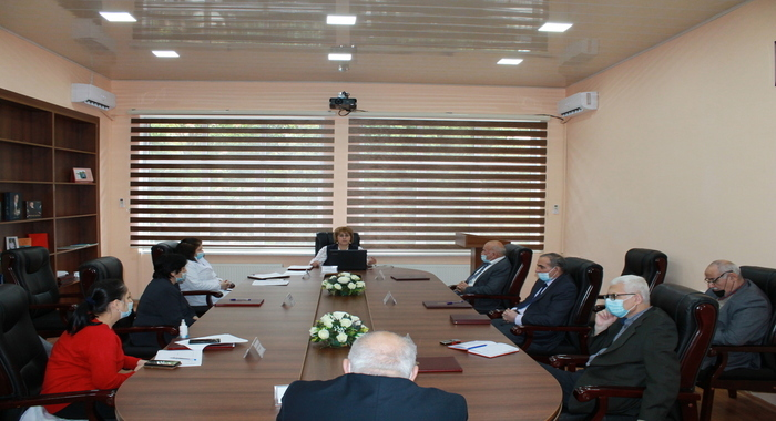 The next online meeting of the Scientific Council was held