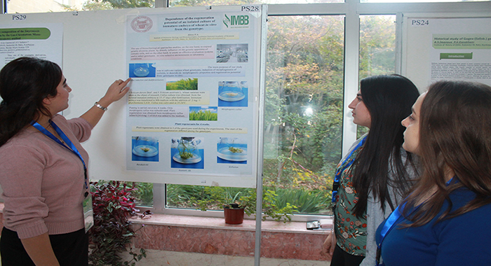 Plenary lectures and presentation of posters at the conference.