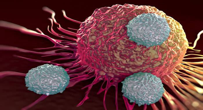 Найден «тормоз» иммунитета против рака