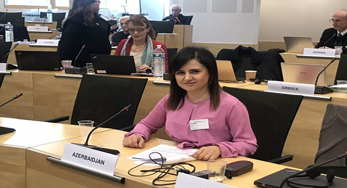 PhD Gulnara Balakishiyeva participated in the  Bioethics Committee of the Council of Europe's 14th meeting held in Strasbourg, France
