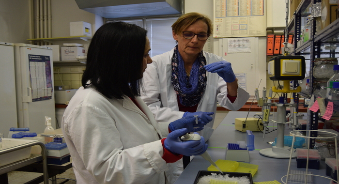 Leading research fellow of the institute was on a scientific trip at the University of Bonn