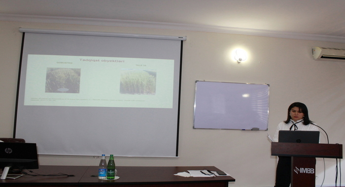Dissertation defense on the specialty of plant physiology was held