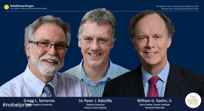 Лауреатами Нобелевской премии по медицине стали два американца и британец